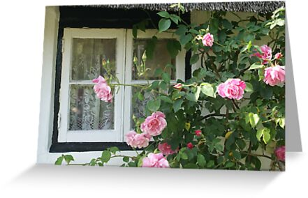 Rose framed thatched cottage window, Wiltshire by BronReid