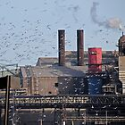 Hitchcock visits the Steel Mill. by ROBERT NIEDERRITER