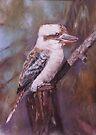 Kookaburra by Lyn Green