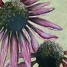 Pink Echinacea by Lynsey Cleaver