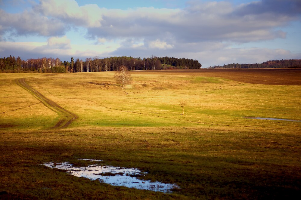 Country Landscape in Autumn by Tom Prokop