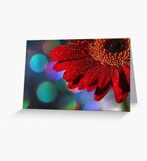 Red Rainbow Gerbera Greeting Card