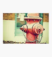 Addiction to Firehydrants Photographic Print