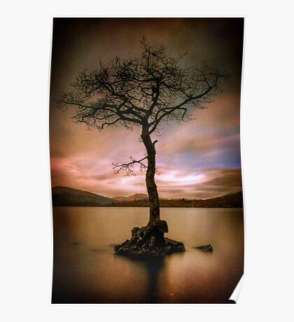 Milarrochy Tree (2) Poster