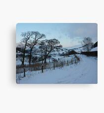 New Radnor snow scene Canvas Print