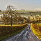 Wiltshire by Murray Swift