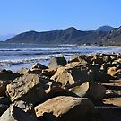 Scenes from Cali I by PJS15204