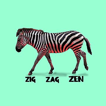 Zebra Zen by underwatercity