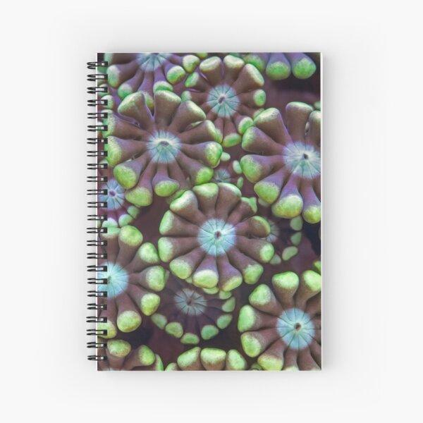 Alveopora coral Spiral Notebook