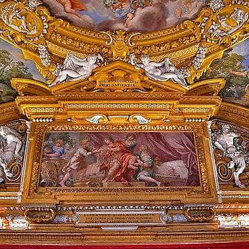 Palazzo Pitti. Florence by terezadelpilar
