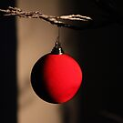 Red Bauble by John Dalkin