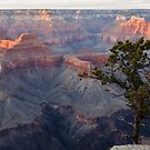 The Grand Canyon South Rim Series - Pima Point - 5 ©  by © Hany G. Jadaa © Prince John Photography