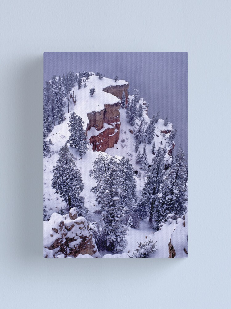 Alternate view of Edge of Winter Canvas Print