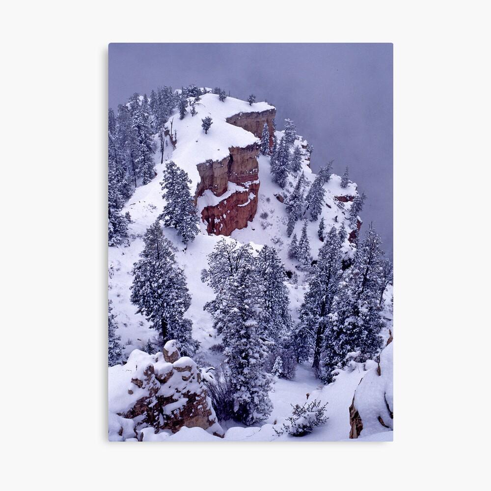 Edge of Winter Canvas Print