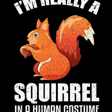 Squirrel In a Human Costume Pet Animal Wildlife by kieranight