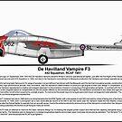 De Havilland Vampire F3 Profile by coldwarwarrior