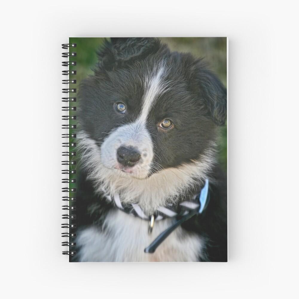 The baby Border Collie Spiral Notebook