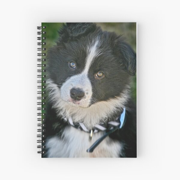 The baby Border Collie Spiral Notebook