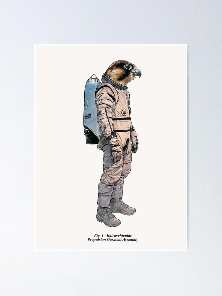 space hawk diagram