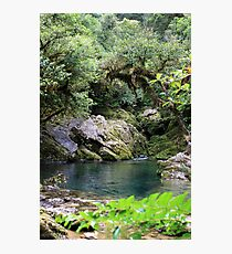 Riwaka peace Photographic Print