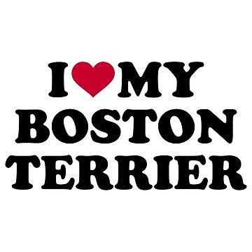 I love my boston terrier by Designzz
