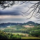 Tuscan Landscape by BLAH! Designs