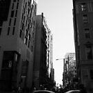 Sydney street chaos by LeighSkaf