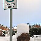 Twenty's plenty by tayforth