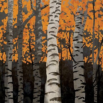 Birch Trees Autumn by carlhuber