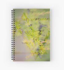 Larch Spiral Notebook