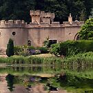 An Englishmans Home - Newstead Abbey by Ray Clarke