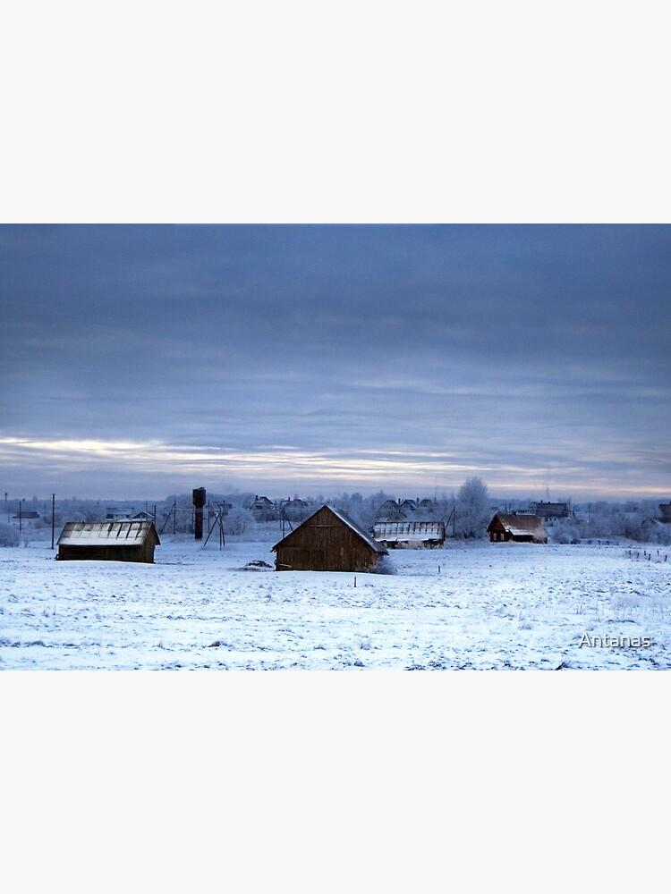 Village in winter by Antanas