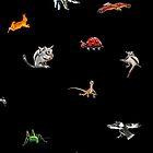 Australian animals by David Fraser