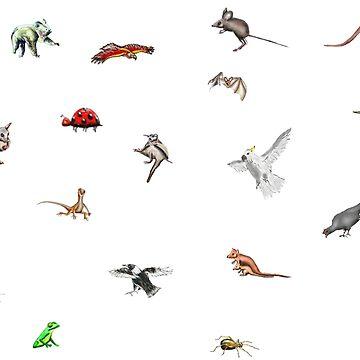 Australian animals by davidfraser
