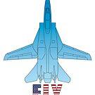 FLY USAF F14 Jet Plane by Jim Plaxco
