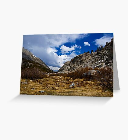 A Dormant Meadow Greeting Card