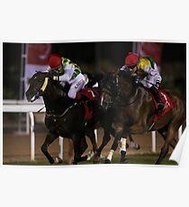 Horse Racing at night Poster