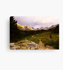 Into the Mountains Canvas Print