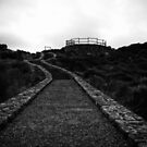Pathway to Sugarloaf B+W by Chris Paddick