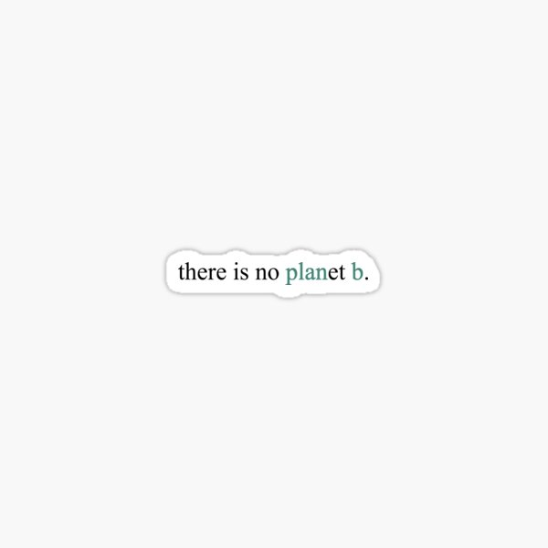 there is no planet b. Sticker