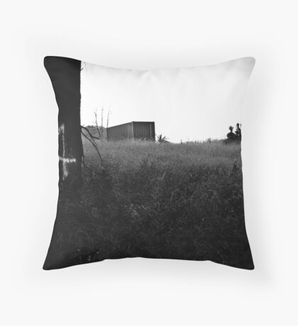 M4 Throw Pillow