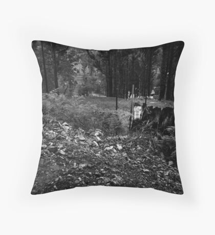 M22 (?) Throw Pillow