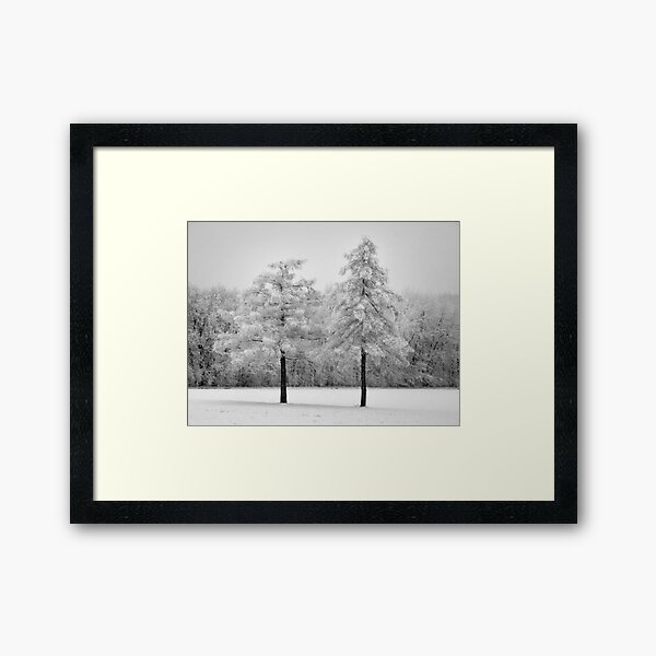 Snowy twin pines Framed Art Print