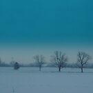 Trees in a Row. by debbiedoda