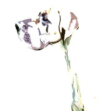 Great Dane Abstract Art  by kjhart8