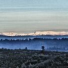 Sno-Caps In The Distance by NancyC