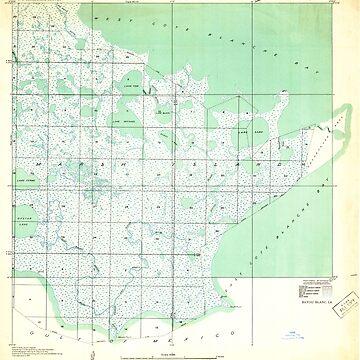 USGS TOPO Map Louisiana LA Bayou Blanc 333646 1932 31680 by wetdryvac
