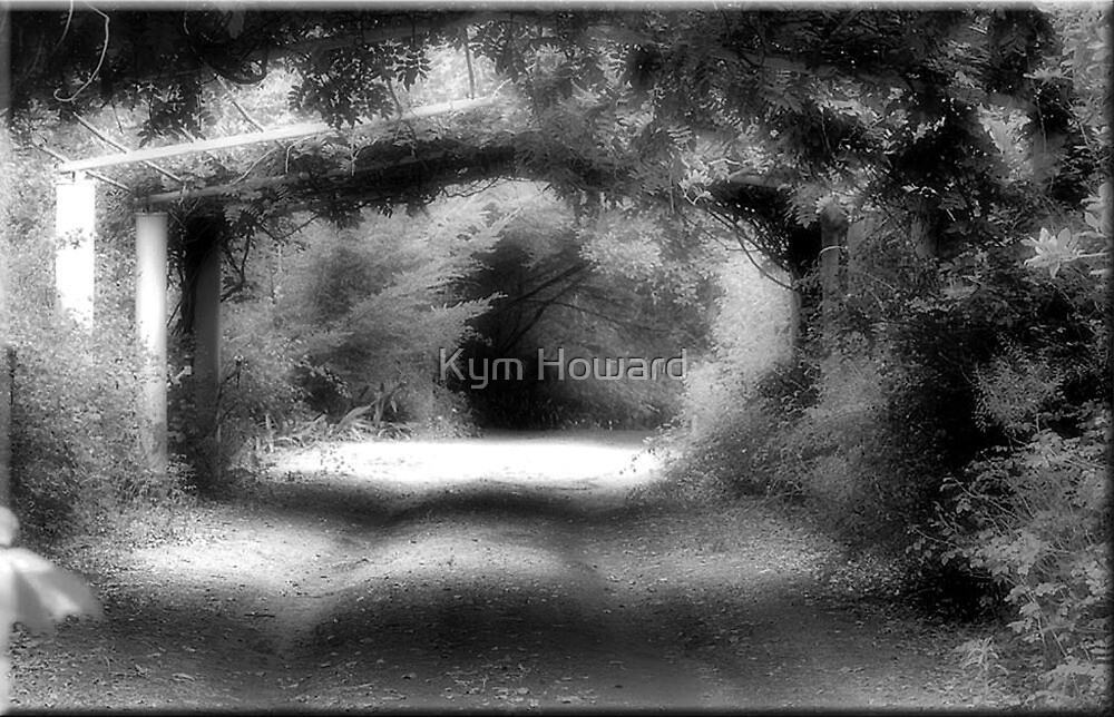 Into the Light by Kym Howard