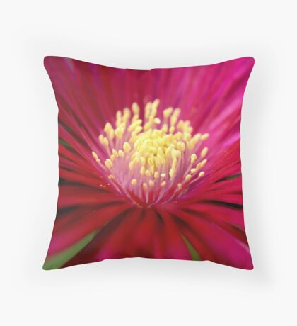 Into the Heat.... Throw Pillow