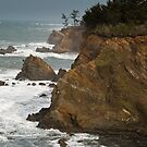 Arago Point, Cape Arago State Park, Oregon by Albert Dickson
